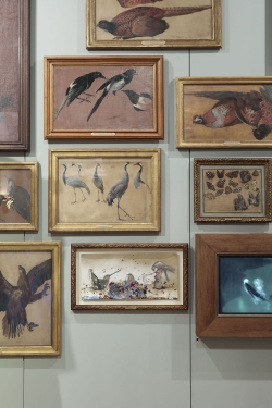 mocquet-musee-chasse-nature-2017-10-9d7536392bc02a8d548b8a25130a6534