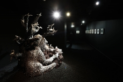 mocquet-musee-chasse-nature-2017-13-e81d8eba6ad3a9c0d4edf35561b06fa5